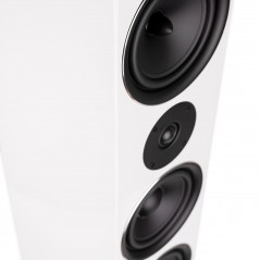 Kolumna głośnikowa podłogowa Exclusive Line EL-10